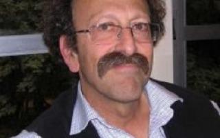 פרופ' שולמן